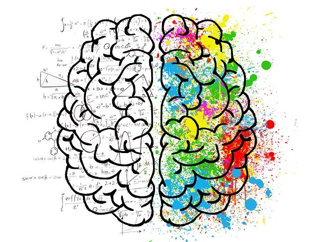 rozbor mozku