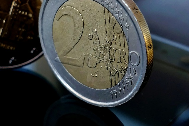 2 euro, mince – detail